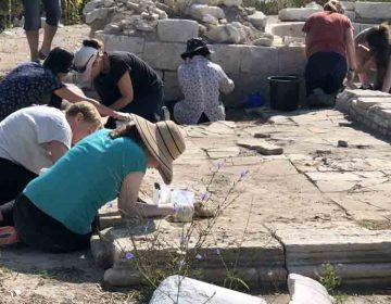 Доброволци от цял свят консервират базилика в крепостта Палматис край Тервел