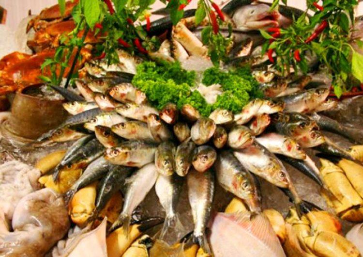 """Предстои 16-ият кулинарен """"Миден и рибен фест"""" в Каварна"""