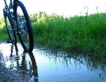 Започва най-дългият велотур в България – от Видин до Дуранкулак
